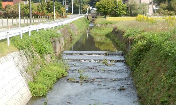 dodomekikawa
