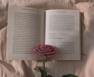 """1万冊以上を読破した""""本の虫""""に聞く「20代の読書術」"""